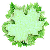 Fresh green leaves vector border. EPS 10