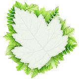 Fresh green leaves vector border. EPS 10
