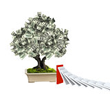 Money tree with dollar banknotes and domino effect