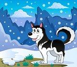 Husky dog theme image 2