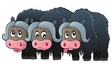 Three muskoxen theme image 1