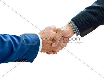 Business People Shaking Hands on the White Background Close-up