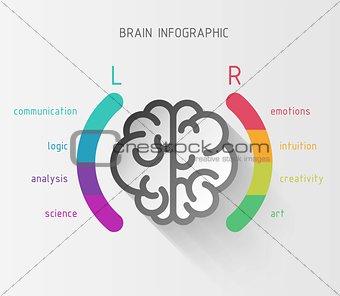 Brain nfographic concept