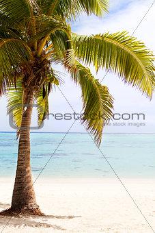 beautiful perfect beach