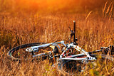 bicycle at sunny evening on countryside