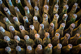 Many old wine bottles top view