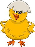little chick cartoon character