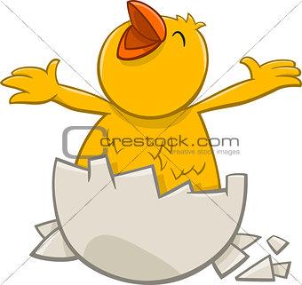 little chicken cartoon character