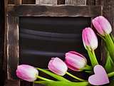 Fresh spring pink tulips on  black empty chalk board