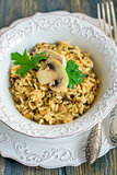 Risotto with mushrooms and onions. View from above.