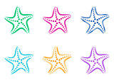 Colorful vector stylized starfish icons