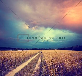 Toned Landscape with Field and Country Road