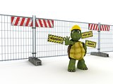 tortoise with construction barrier fence