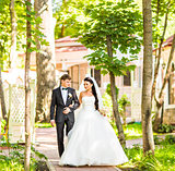 Bride and groom walking  in summer park outdoors
