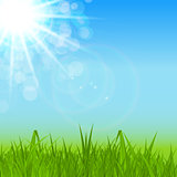 Natural Sunny Spring, Summer Background with Blue Sky and Green Grass Vector Illustration