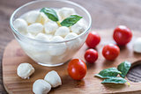 Bowl of Bocconcini mozzarella with fresh cherry tomatoes