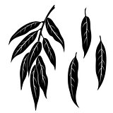 Willow Leaves, Pictogram Set