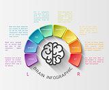 Brain infographic concept