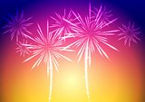 Bright vector fireworks background