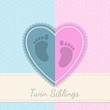 Blue pink baby shower twin siblings invitation