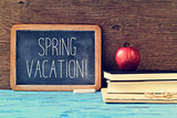 text spring vacation in an old chalkboard