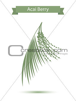 Acai palm leaves and acai berries vector illustration isolated on white background. Superfood acai green silhouette berry fruit.