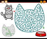 maze or labyrinth task