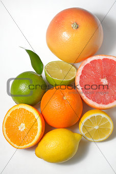 citrus fruits isolated