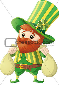 beautiful leprechaun on white background