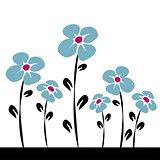 blue daisys