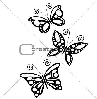 three butterflies 2