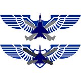 Badges Air Force