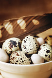 Food easter background with quail eggs