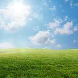 Spring lawn landscape