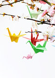 colorful paper origami birds on flowering branches of cherry (sakura)