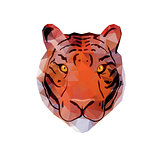 Abstract Tiger Head