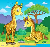 Giraffes in nature theme image 1