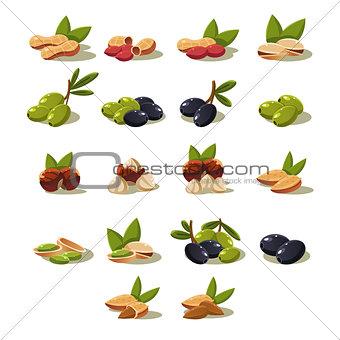 Olives and Nuts, Vector Illustration Modern Design Set