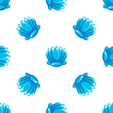 Sea Shell Pattern, Vector Illustration