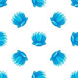 Sea Shell Pattern, Vector Illustration