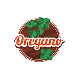 Oregano Spice. Vector Illustration.