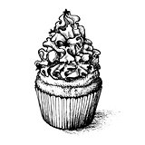 Hand drawn cupcake  for coloring book