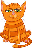 cat pet cartoon character