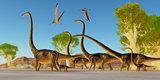Jurassic Omeisaurus Forest