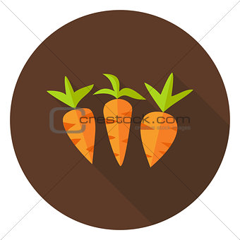 Carrots Vegetables Circle Icon with long Shadow