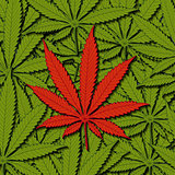 Cannabis as a background