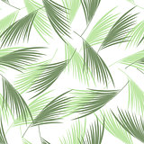 Tropical palm leaves seamless pattern. . Floral background. Vector illustration