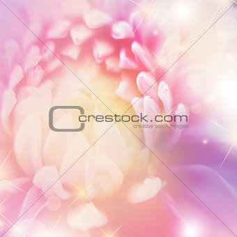 beautiful  floral background with  bokeh