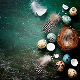 Easter composition with eggs and nest