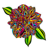 Rainbow Multicolored Dahlia Flower
